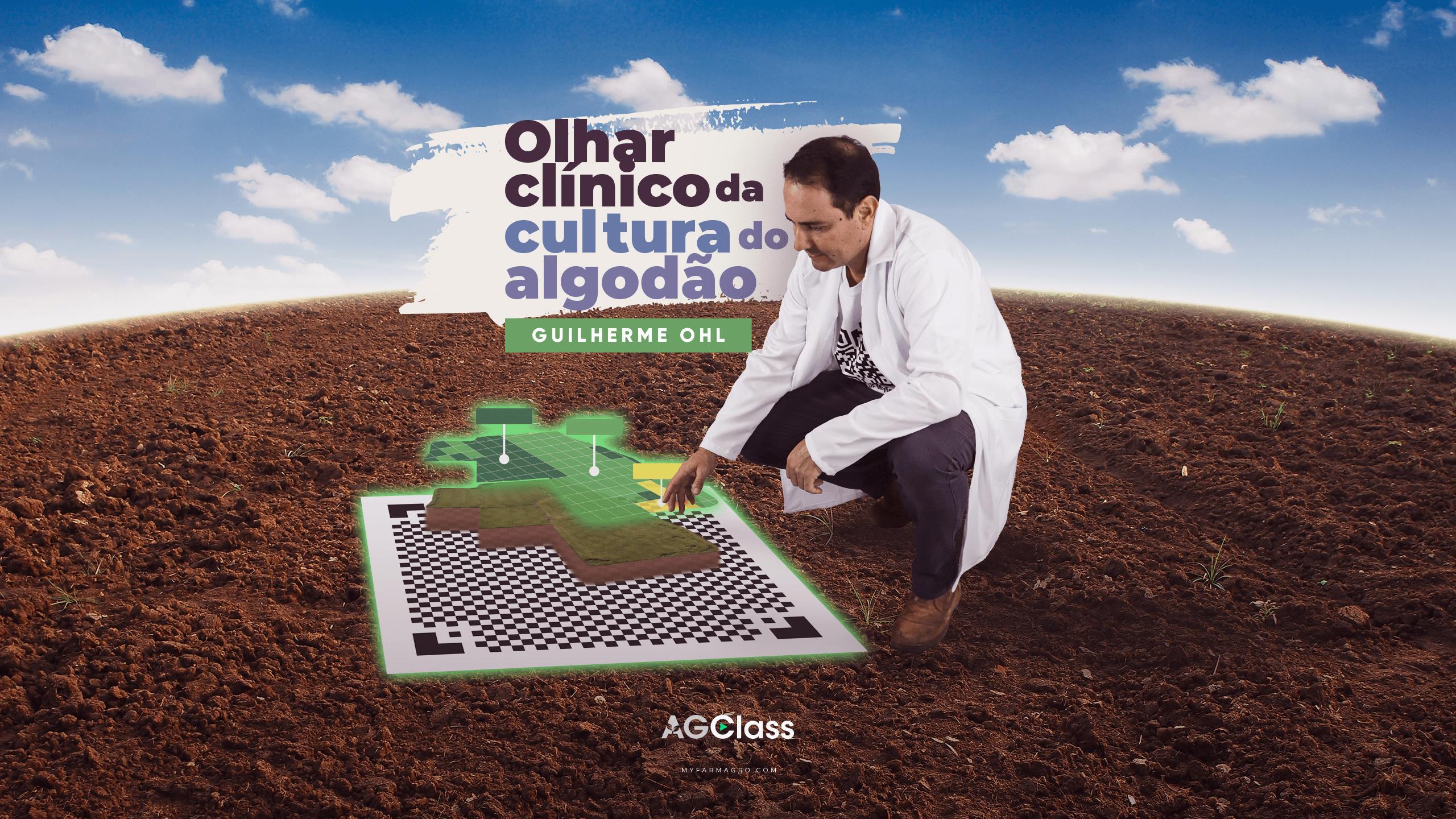 OLHAR CLÍNICO DA CULTURA DO ALGODÃO